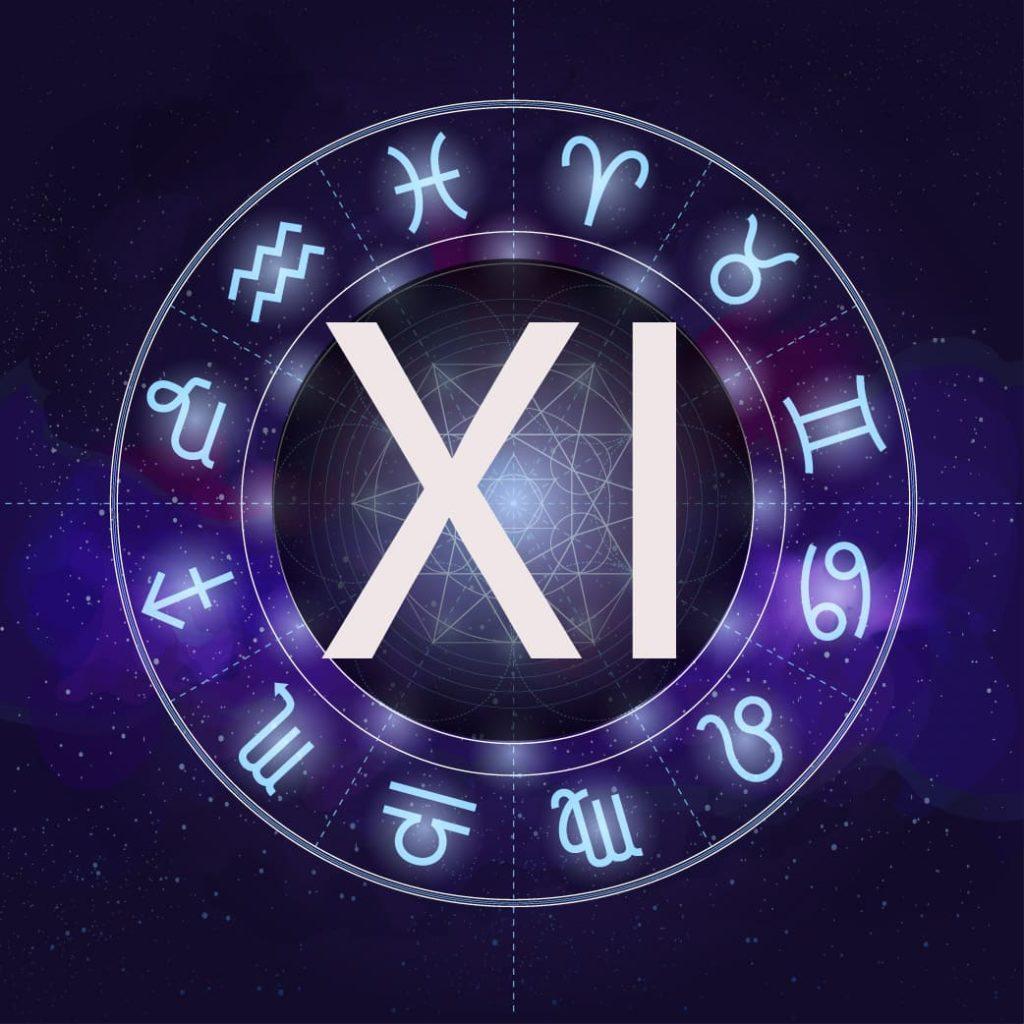 11 дом астрологии